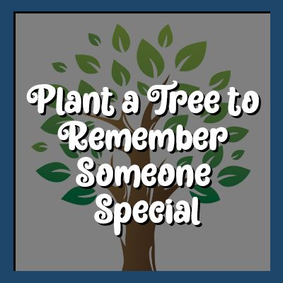 Plant a Tree to Remember Someone Special